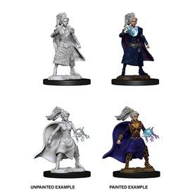 Human Female Sorcerer - Miniatura Dungeons and Dragons