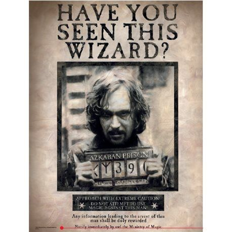 Poster de vidrio Sirius Black - Harry Potter